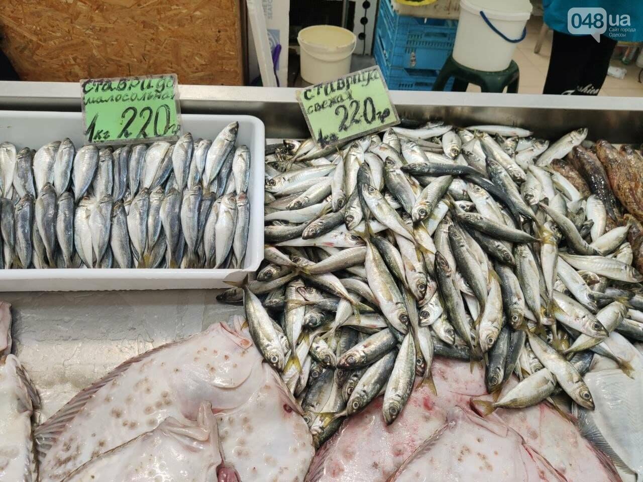 Рапаны, ставрида и кефаль: рыбный четверг на одесском Привозе, - ФОТО, фото-3