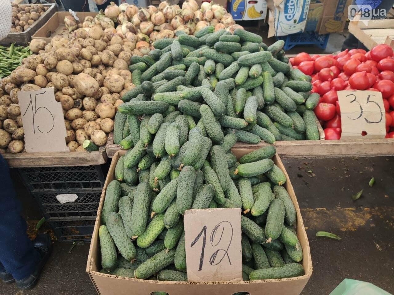 Абрикосы, черешня, кабачки: почем на одесском Привозе фрукты и овощи, - ФОТО, фото-2