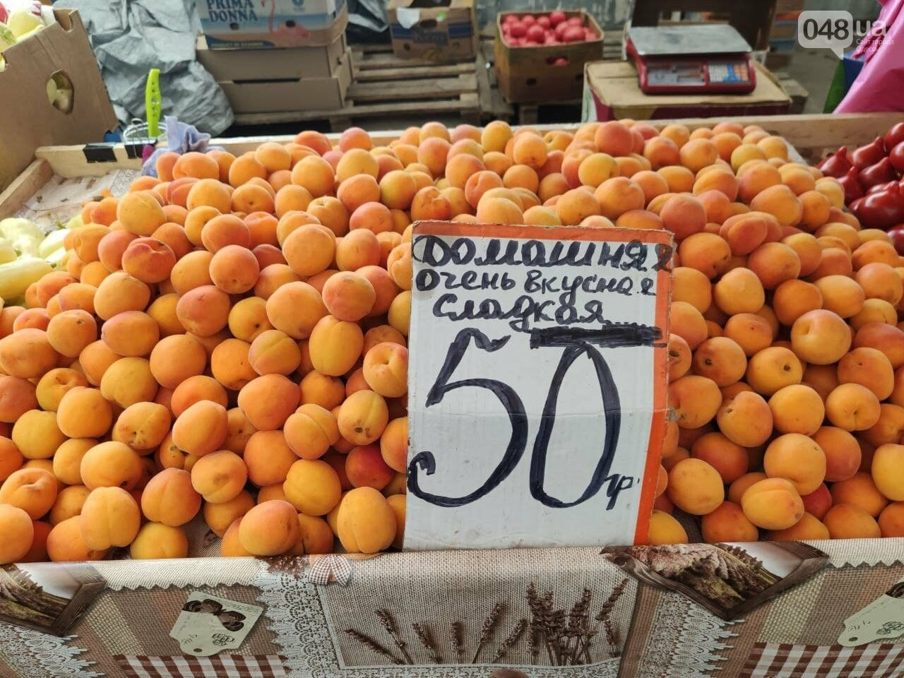 Абрикосы, черешня, кабачки: почем на одесском Привозе фрукты и овощи, - ФОТО, фото-3