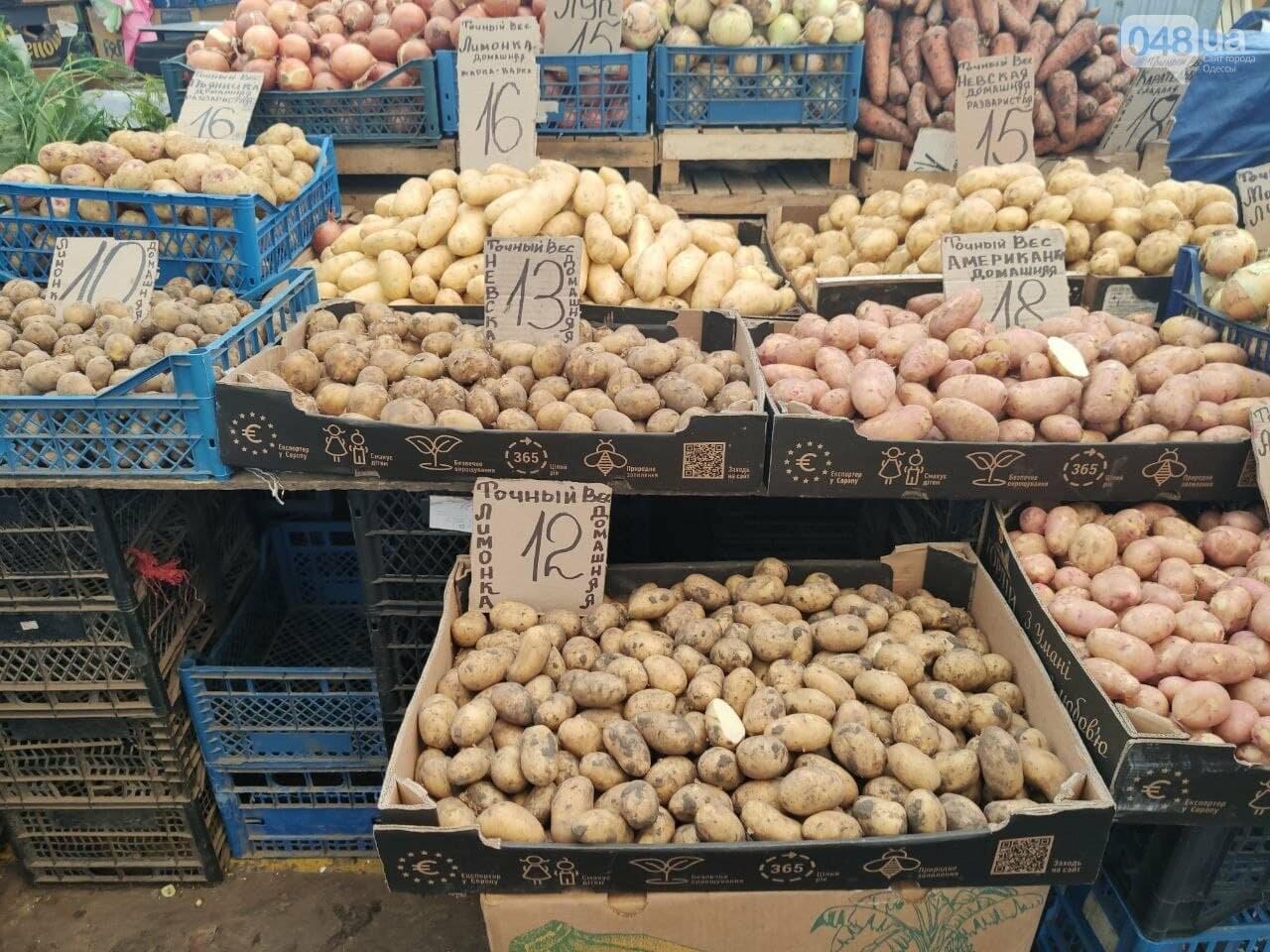 Абрикосы, черешня, кабачки: почем на одесском Привозе фрукты и овощи, - ФОТО, фото-1
