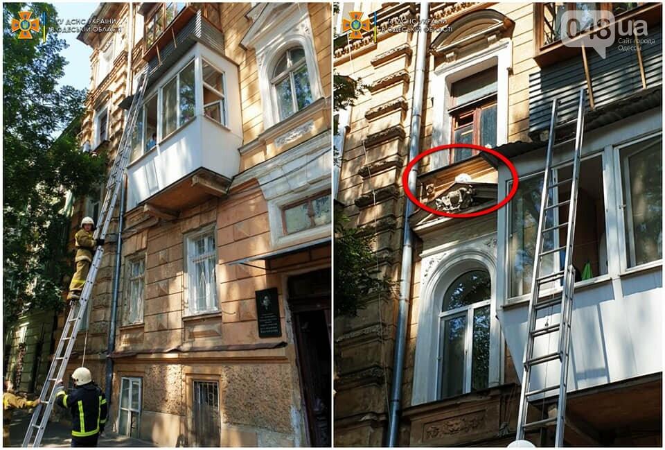 В Одесской области на выходных сотрудники ГСЧС спасали котов, - ФОТО , фото-3