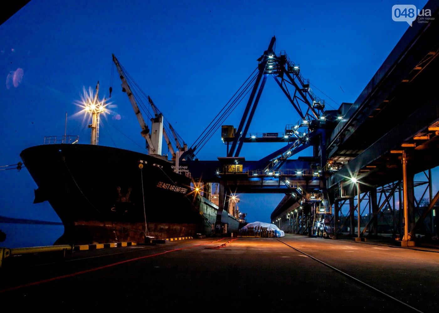 Одесский припортовый завод: как приватизируют химического гиганта, фото-1