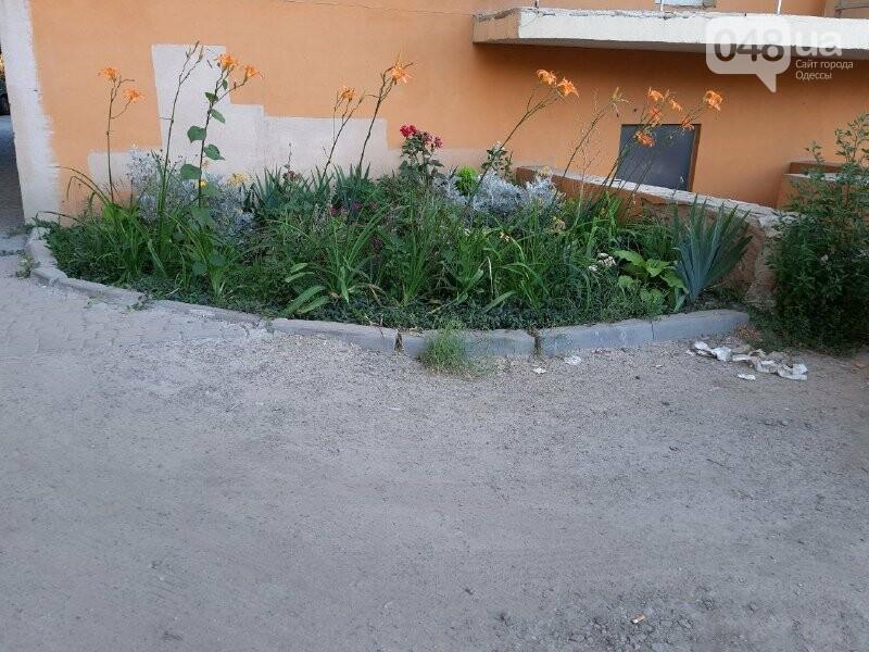 Четыре года без воды: в Одессе застройщик обманул покупателей квартир, - ФОТО, ВИДЕО , фото-4