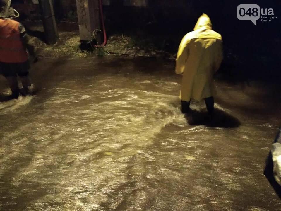 Ливень в Одессе: затоплены  улицы, повалены деревья,- ФОТО, фото-2