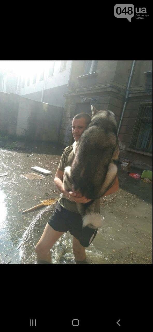 В Одессе на Пересыпи затопило первые этажи,- ФОТО, фото-9