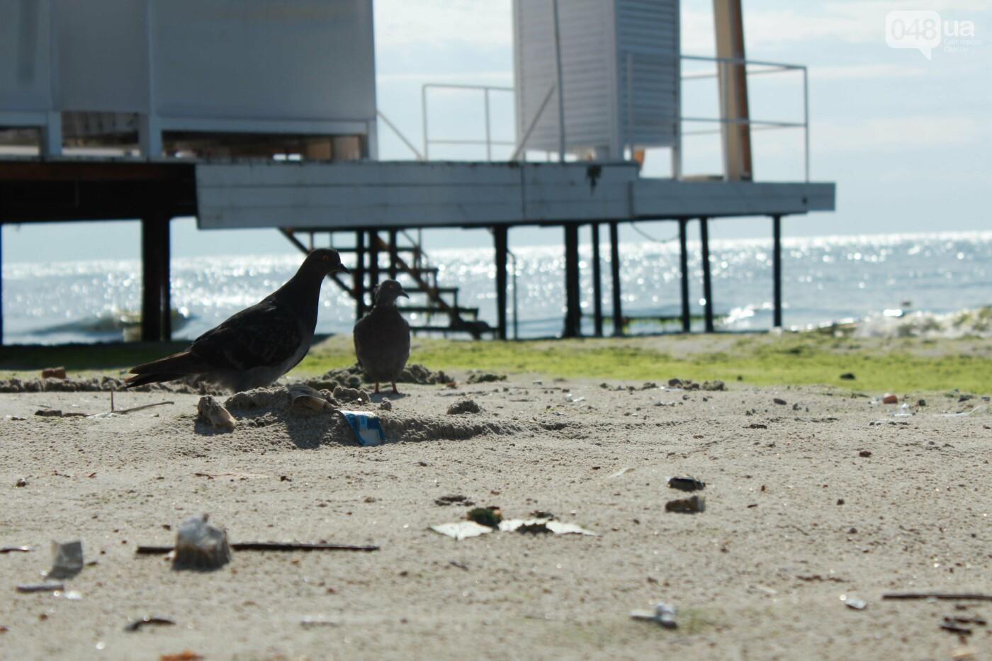 Часть одесской Аркадии буквально смыло в море, - ФОТО, ВИДЕО , фото-48