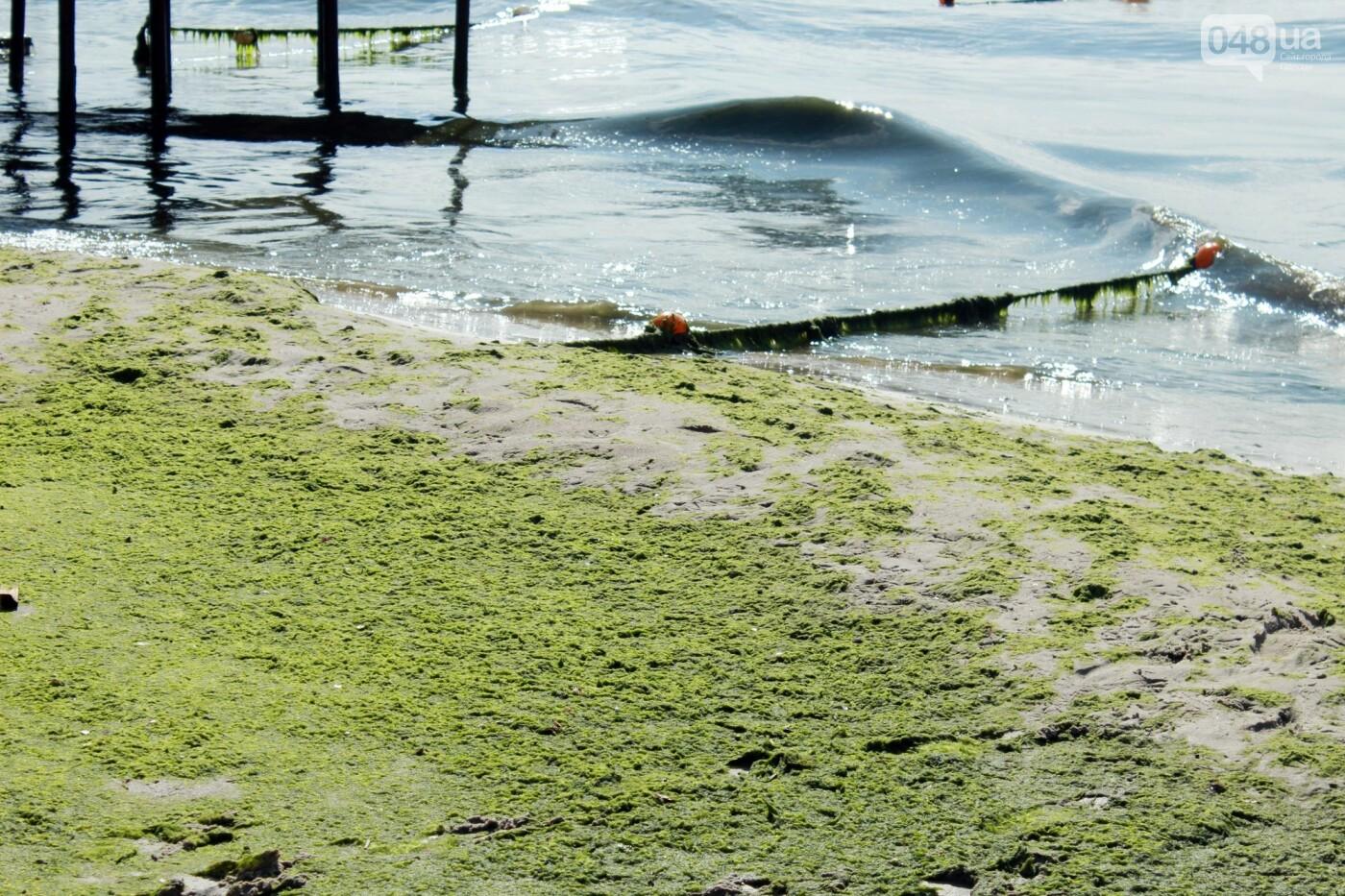 Часть одесской Аркадии буквально смыло в море, - ФОТО, ВИДЕО , фото-46