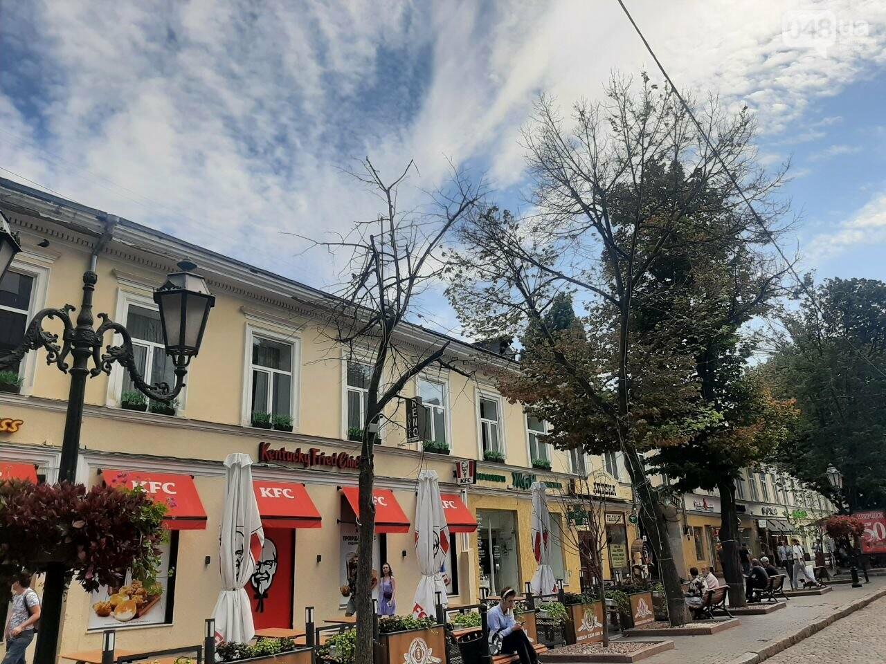Дерибасовская после ливня в Одессе, - ФОТО, ВИДЕО, фото-3