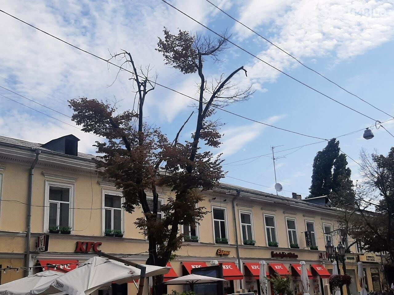 Дерибасовская после ливня в Одессе, - ФОТО, ВИДЕО, фото-1