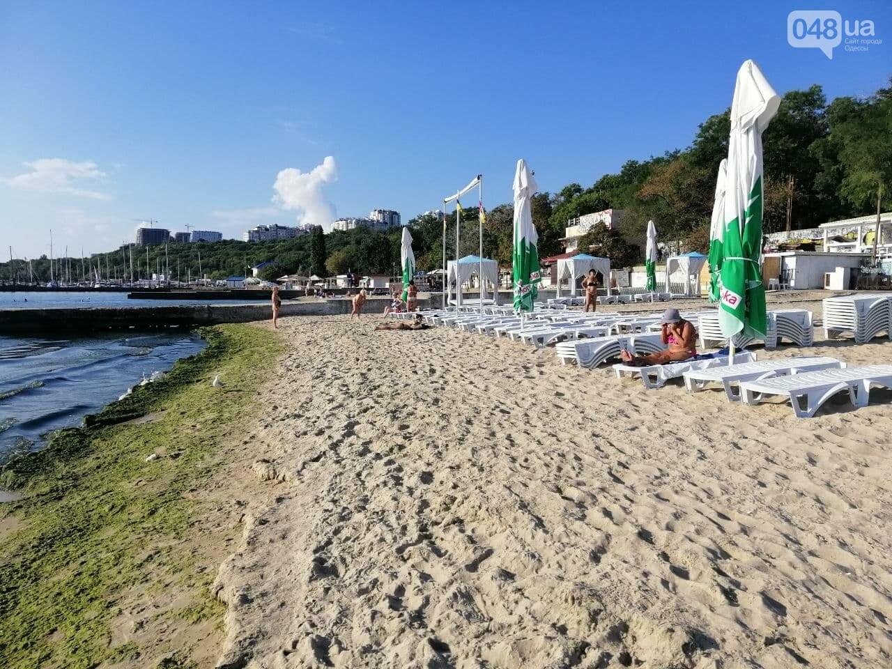 Что происходит в первый день осени на одесском пляже,- ФОТОРЕПОРТАЖ, фото-10