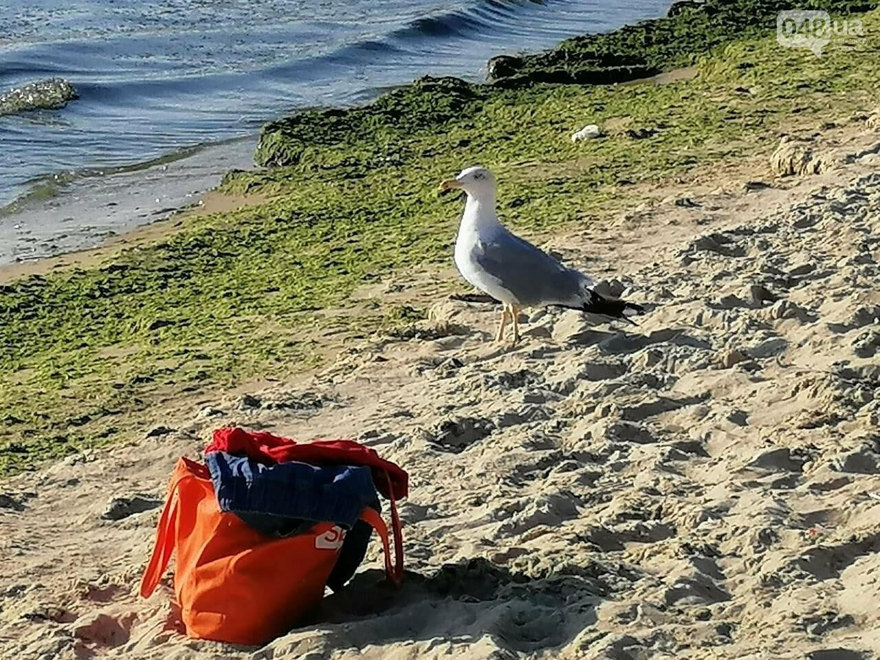 Что происходит в первый день осени на одесском пляже,- ФОТОРЕПОРТАЖ, фото-16