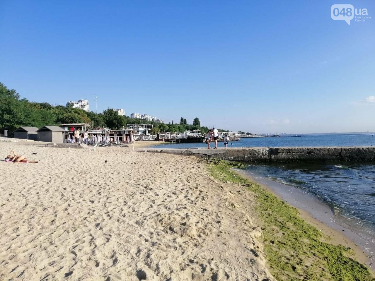 Что происходит в первый день осени на одесском пляже,- ФОТОРЕПОРТАЖ, фото-20