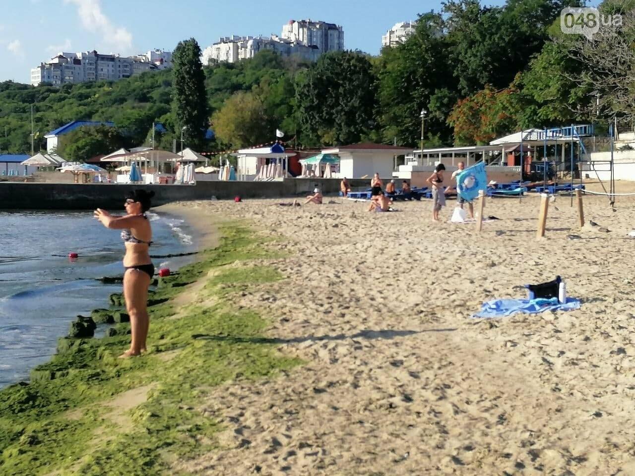 Что происходит в первый день осени на одесском пляже,- ФОТОРЕПОРТАЖ, фото-11
