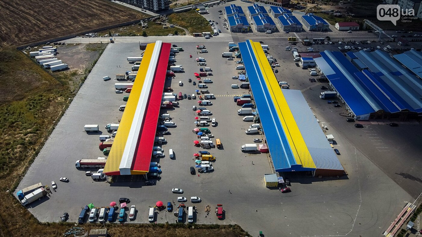 Подарок городу: на рынке «Початок» создали самый большой флаг Одессы – его видно из космоса, фото-6