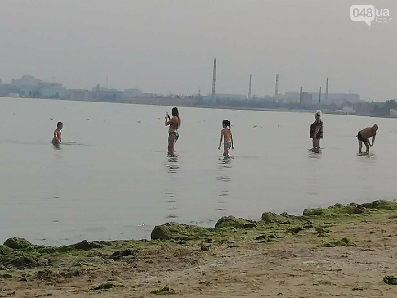 На пляжах Одессы начался бархатный сезон,- ФОТОРЕПОРТАЖ, фото-12