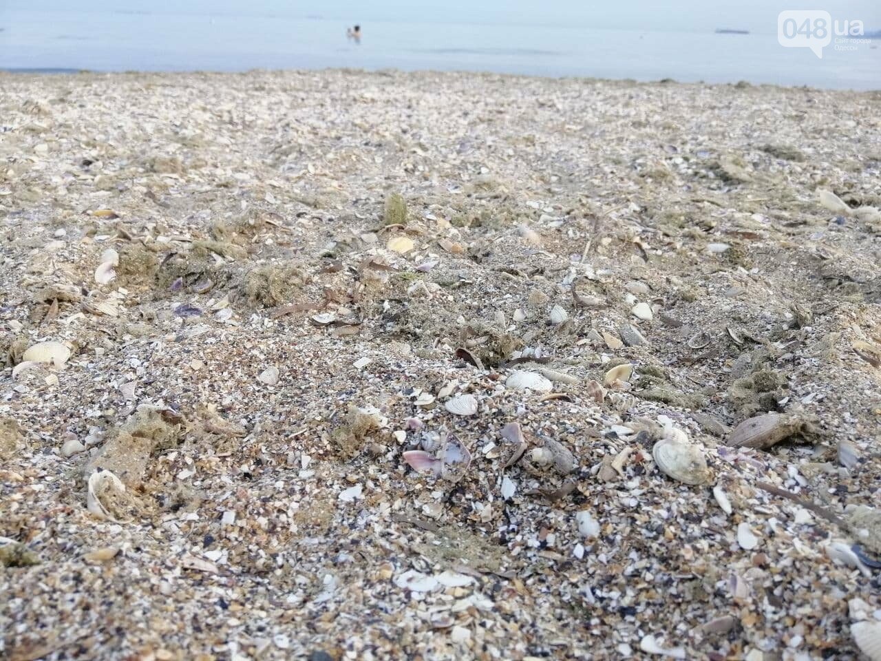 На пляжах Одессы начался бархатный сезон,- ФОТОРЕПОРТАЖ, фото-20