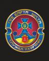 Варта міста, охранное агенство