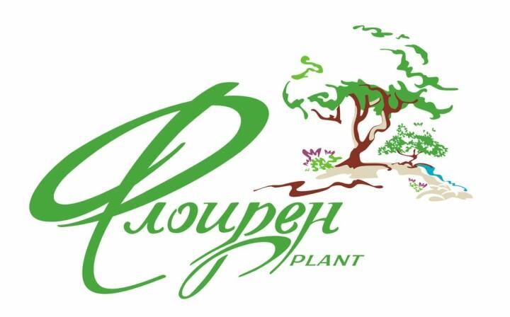 Логотип - ФлоИрен, оптовая продажа рассады и горшечных цветов