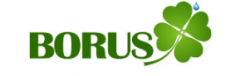 Логотип - Борус, borus,  диагностический центр
