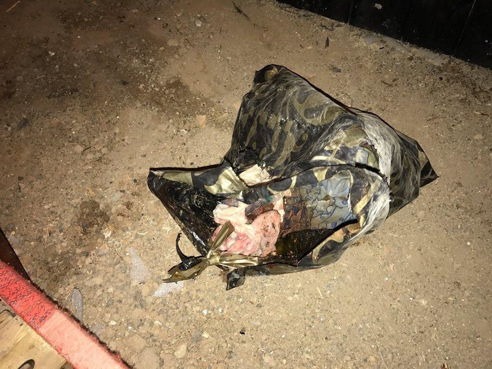 Жесть: Под Одессой нашли ребенка в пакете (ФОТО), фото-3