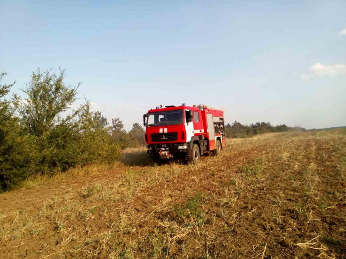 В Одесской области пожар в сосновом лесу тушили самолетом (ФОТО), фото-1