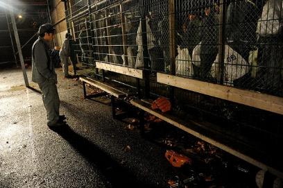 200 Одесситов добровольно сядут в тюрьму, фото-1