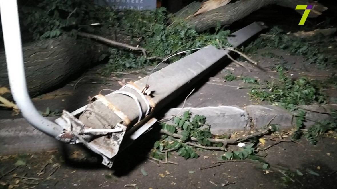 В Одессе упавшее дерево придавило прохожих (ФОТО), фото-2