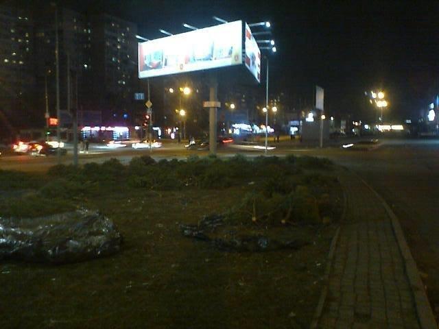 """На поселке Котовского в Одессе - """"кладбище"""" сосен, брошенных торговцами, - ФОТО , фото-3"""