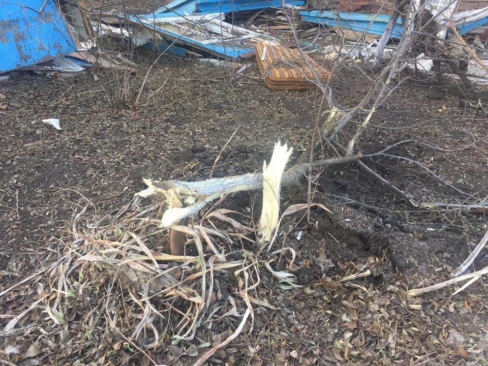 Полиция еще не открыла производство по ночному инциденту на одесском пляже, фото-3