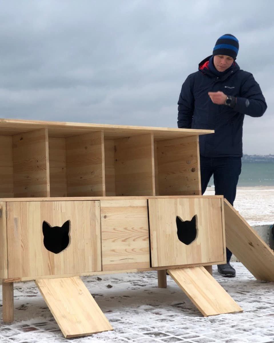 В Одессе строят дома котикам на зиму, - ФОТО, фото-5