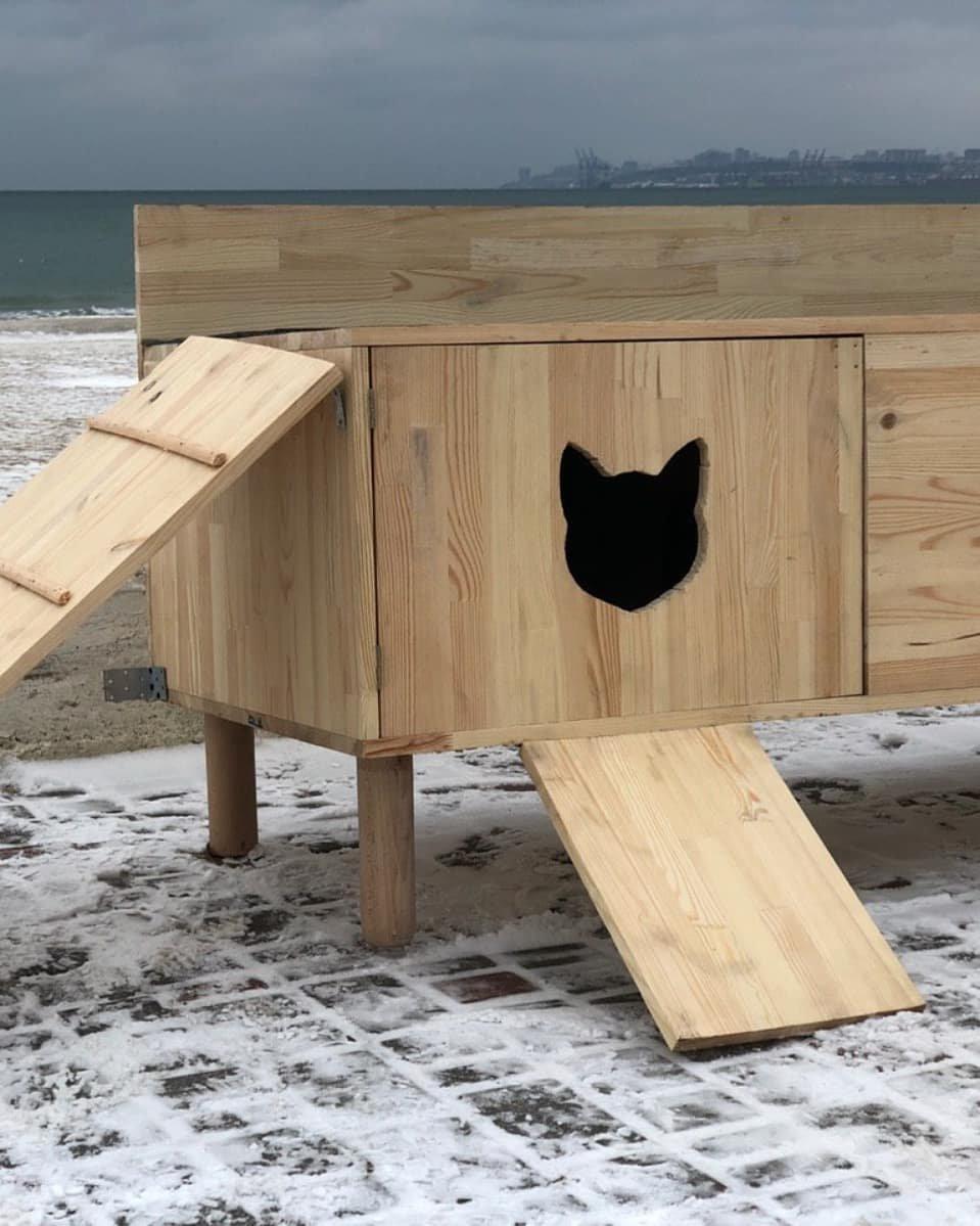 В Одессе строят дома котикам на зиму, - ФОТО, фото-6