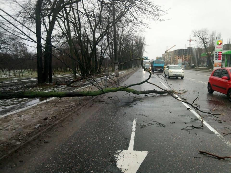 Непогода на время усложнила движение на одесской дороге, - ФОТО, фото-3, Фото: Патрульная полиция