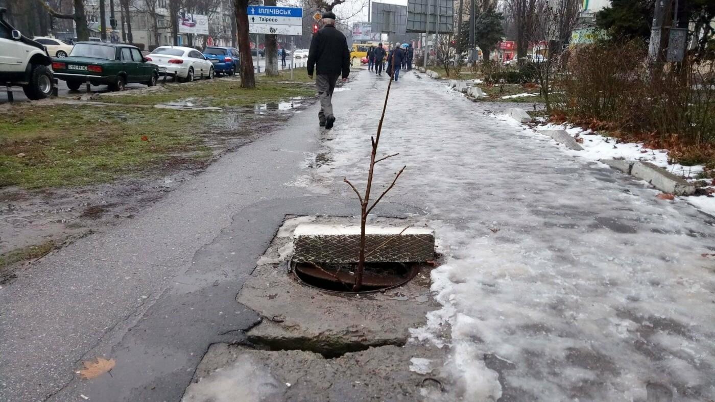 Фото: Иван Бошку