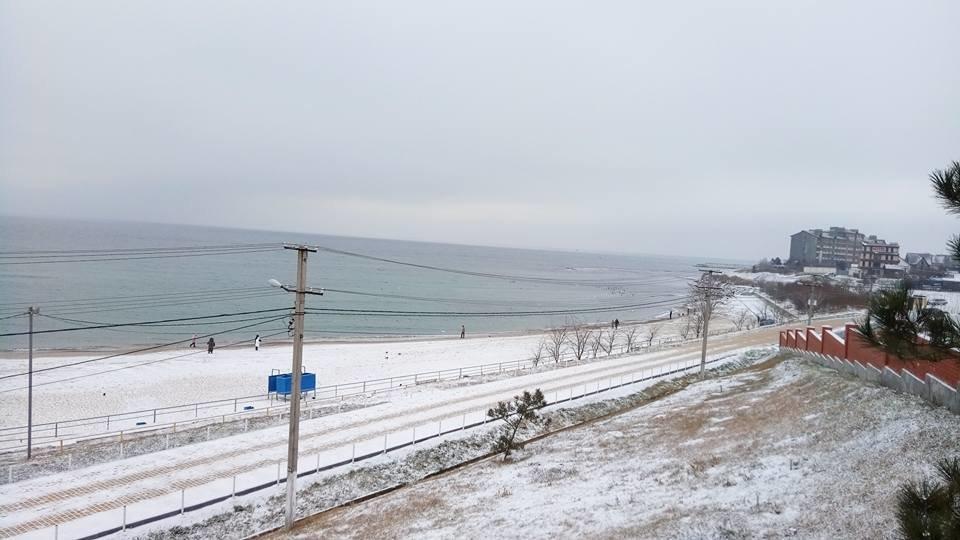 Восхитительный зимний пляж показал одессит в соцсетях, - ФОТО, фото-4, Фото: Иван Бошку