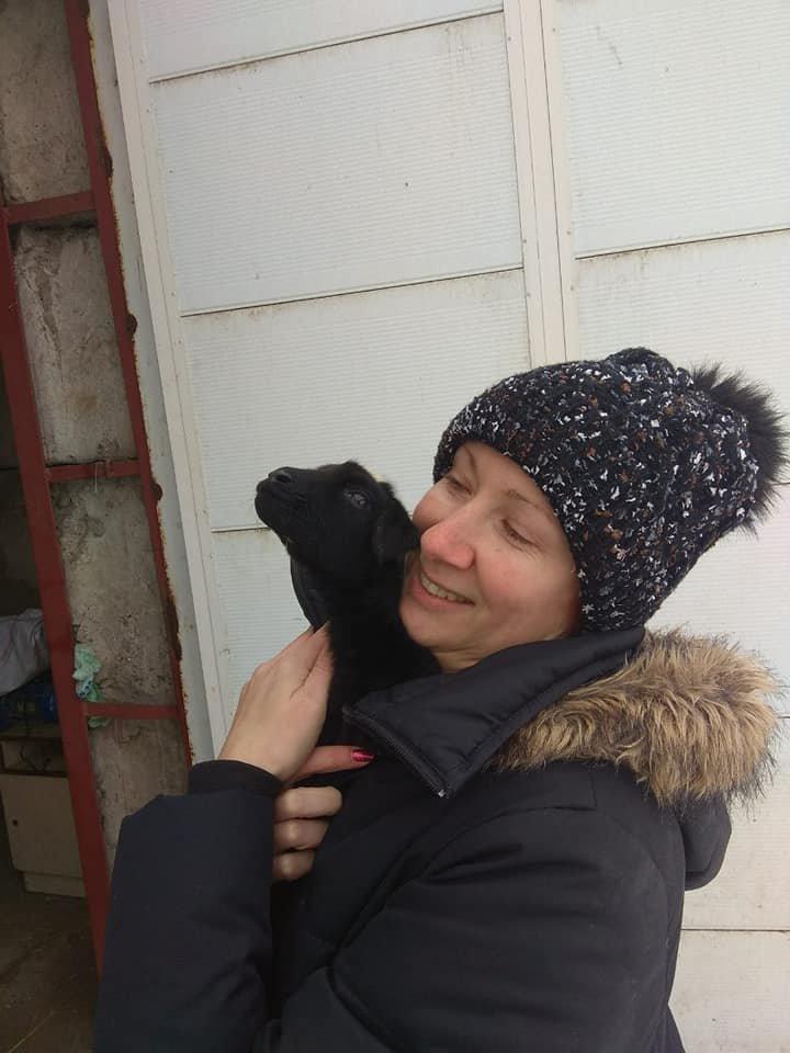 """Волонтеры рассказали, как живут под Одессой овечки из """"фуры смерти"""", - ФОТО, фото-2, Фото: Animal-SOS-Odessa"""