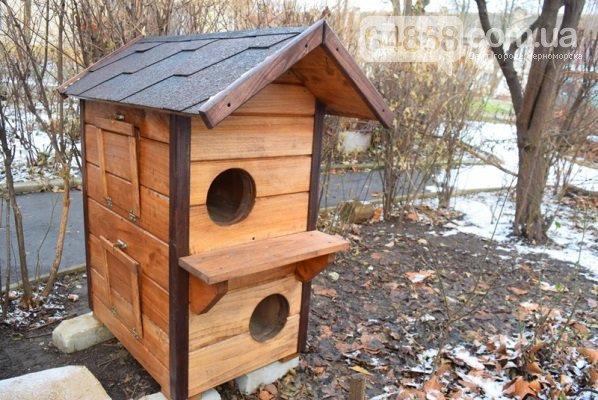 Еще больше котопунктов: под Одессой установили дом для котов, - ФОТО, фото-2