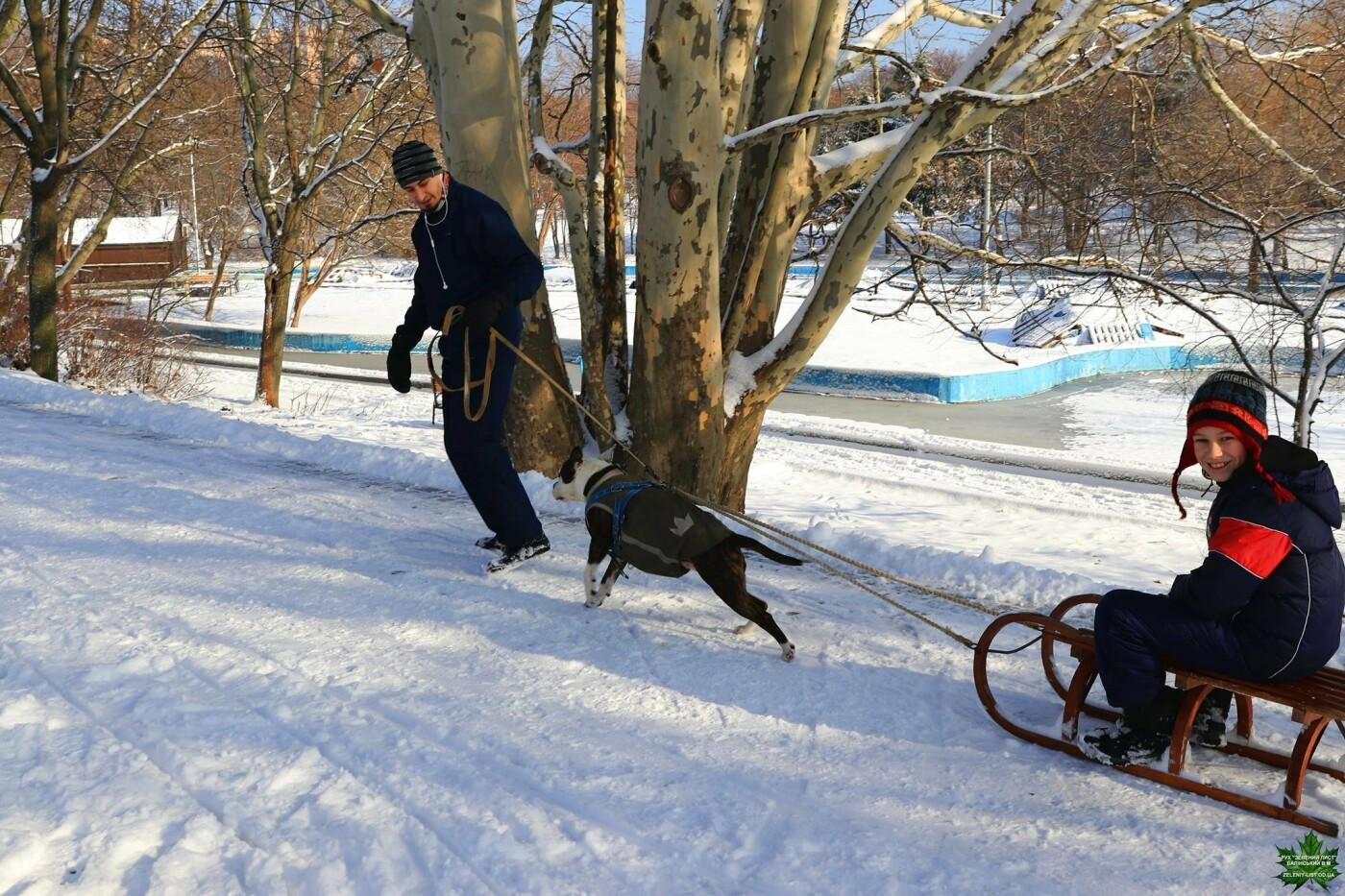 Одессит показал зиму в парке Победы, - ФОТО, фото-8, Фото: Владислав Балинский