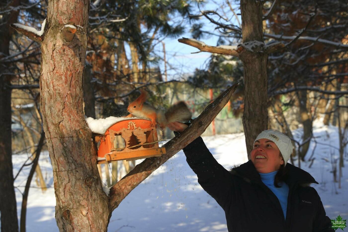 Одессит показал зиму в парке Победы, - ФОТО, фото-3, Фото: Владислав Балинский