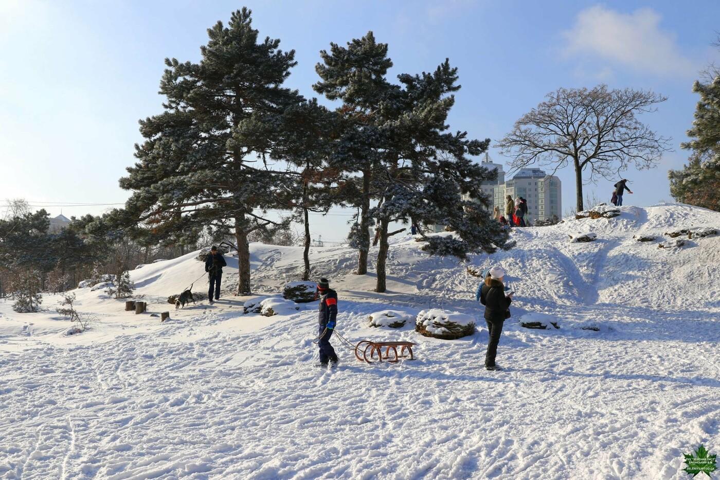 Одессит показал зиму в парке Победы, - ФОТО, фото-12, Фото: Владислав Балинский