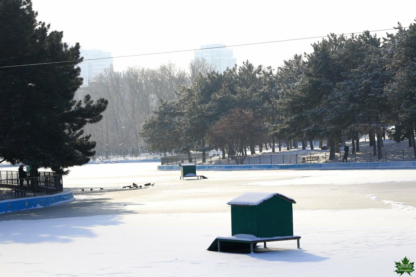 Одессит показал зиму в парке Победы, - ФОТО, фото-10, Фото: Владислав Балинский