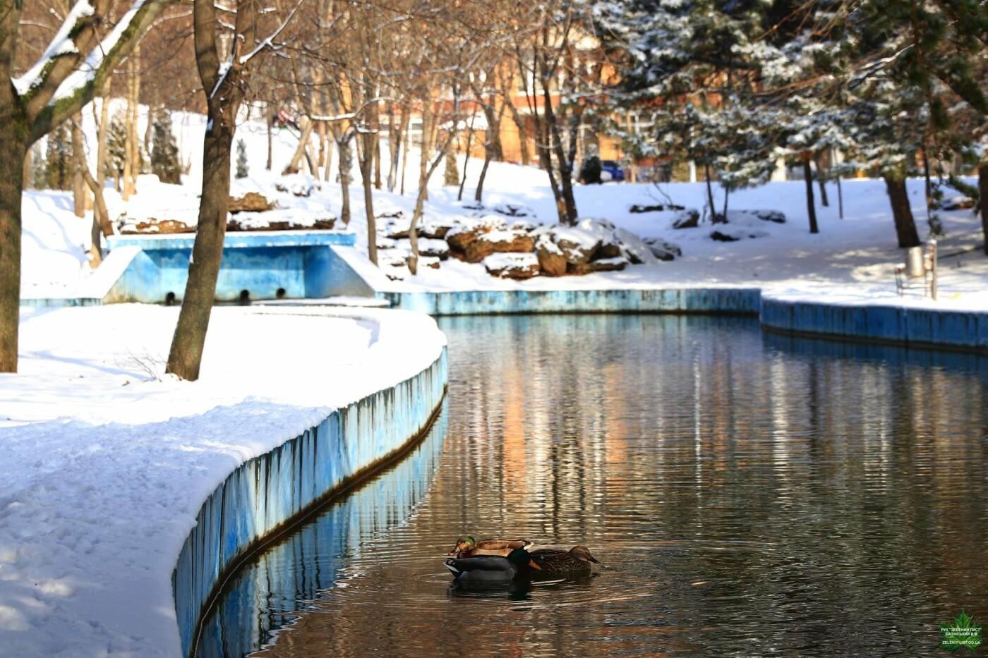 Одессит показал зиму в парке Победы, - ФОТО, фото-9, Фото: Владислав Балинский