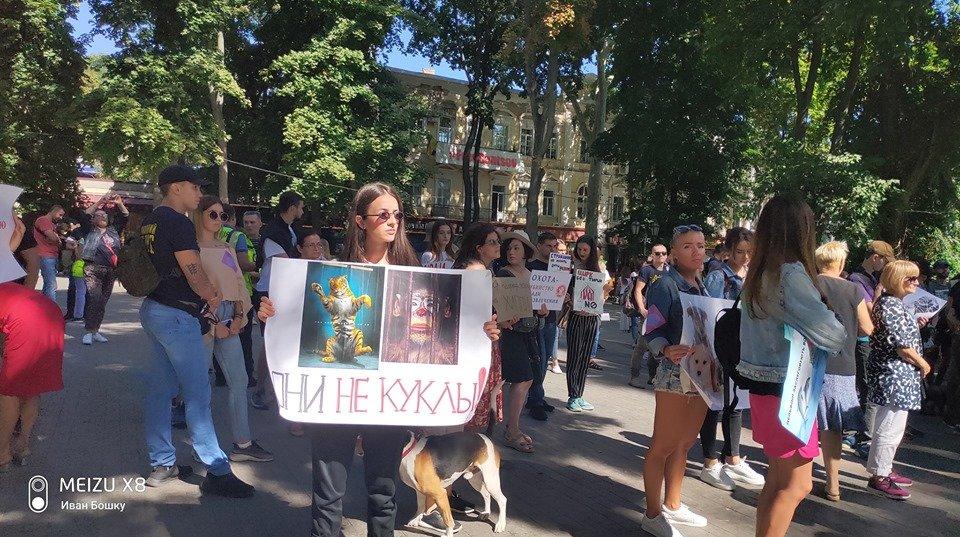 """""""Они не куклы"""": одесситы вышли на марш за права животных, - ФОТО, фото-5, Иван Бошку"""