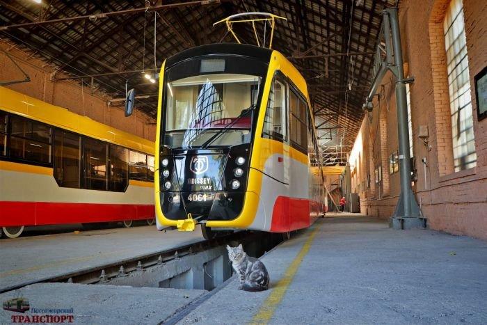 В Одессе презентовали первый многосекционный трамвай, фото-1