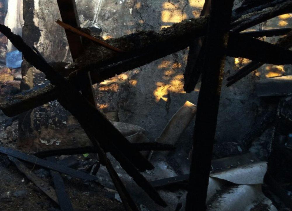 Двое людей сгорело в пожаре в Одесской области, - ФОТО, фото-3