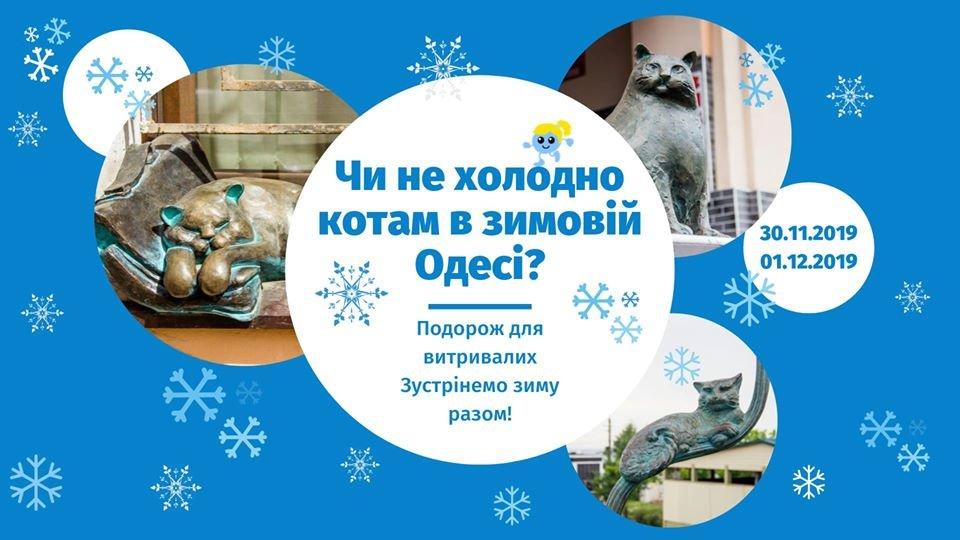 Куда пойти в Одессе: бесплатные мероприятия на выходных, - ФОТО , фото-3