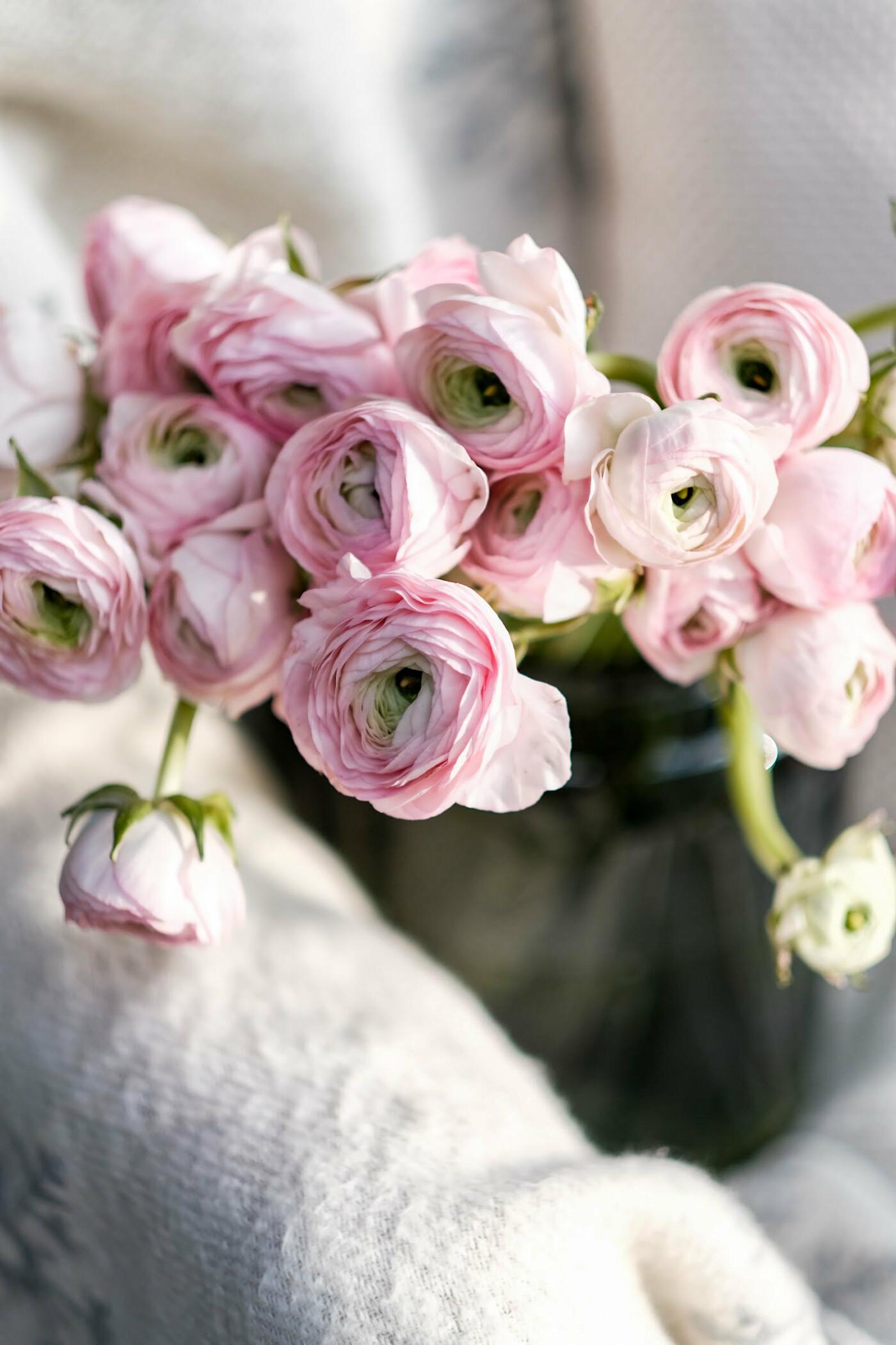 Где провести, что подарить и где купить цветы на 8 марта?, фото-18