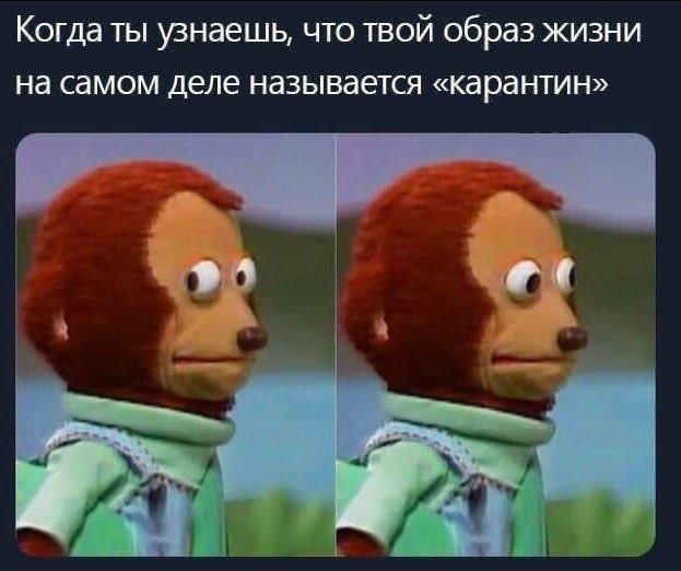 """Картинки по запросу """"коронавирус мемы"""""""