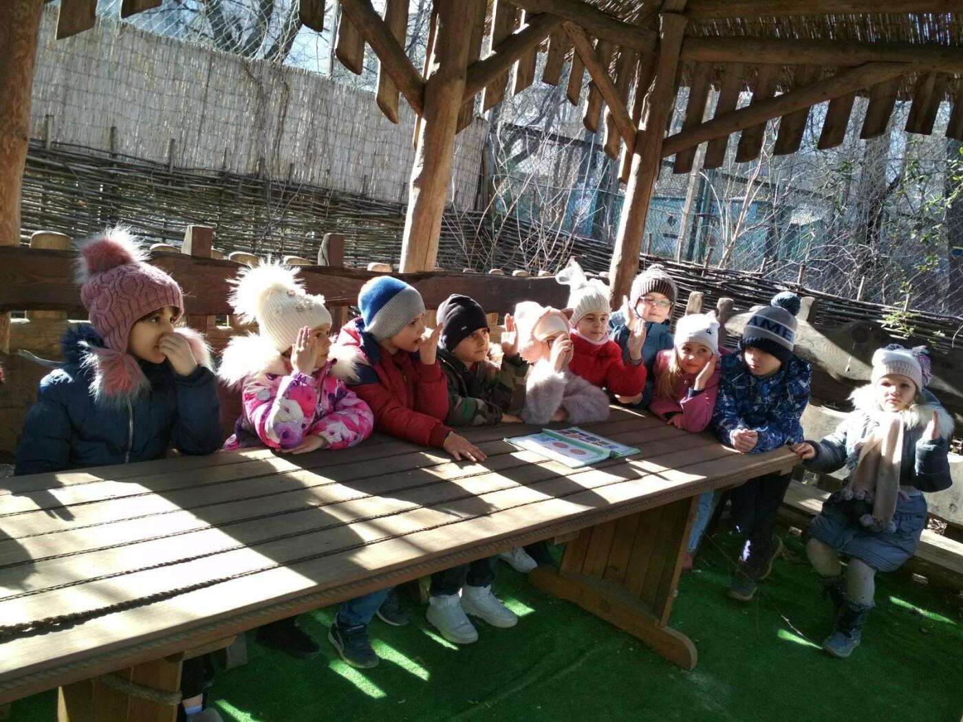Развитие и образование ребенка в Одессе, фото-5