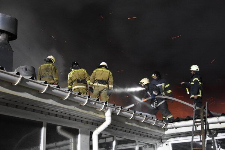 Пожарные полночи тушили масштабный пожар под Одессой, - ФОТО2