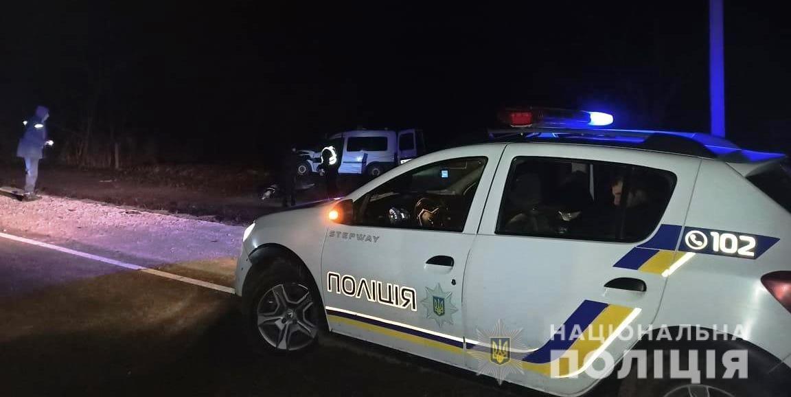"В Одесской области произошло ДТП с участием коня и ""Opel"": водитель и животное погибли на месте, - ФОТО, фото-1"